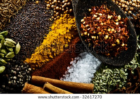 Cumin, Paprika, Cardamon, Cinnamon, Mustard Seed, Coriander Seed, Tumeric, Salt, Pepper, Fennel, Cloves and Chili. - stock photo