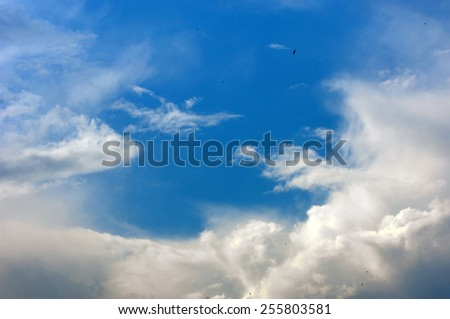 cumulus clouds. texture - stock photo