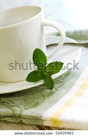 cup and mint