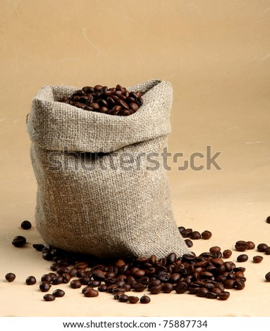 Cup from coffee on coffee grains - stock photo