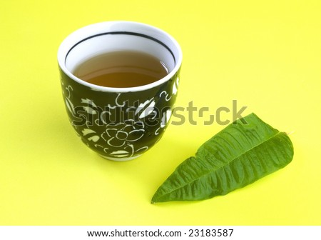 Cup of Cedron's tea - stock photo