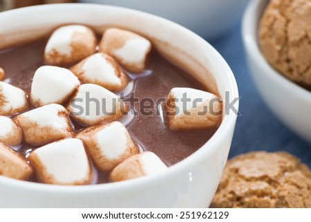 cup of cocoa with marshmallows, selective focus, close-up - stock photo