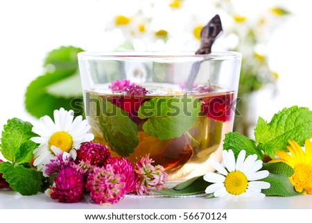cup of herbal tea and fresh flowers on a white background - stock photo