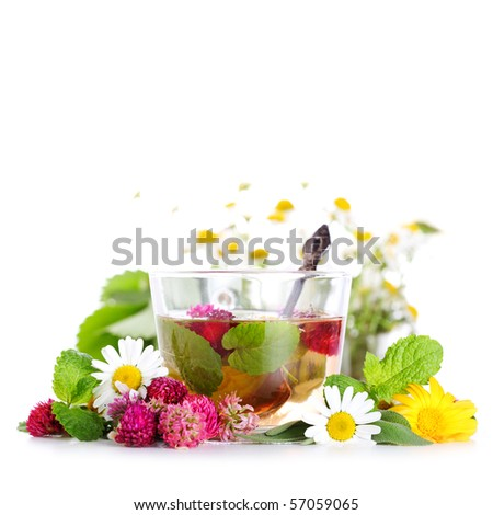 cup of herbal tea and fresh flowers on isolated white background - stock photo