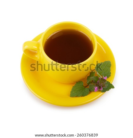 Cup of tea and Melissa leaves on a white background isolated - stock photo