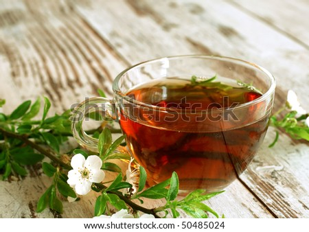 cup of tea and spring branch on wooden