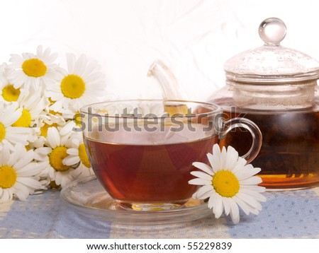 cup of tea and white flowers - stock photo