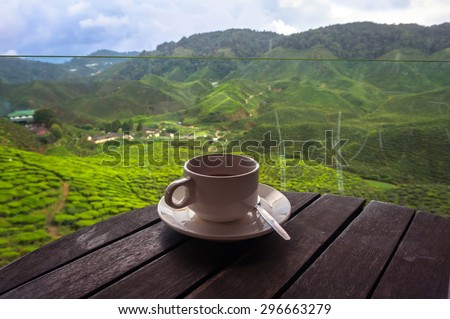 Cup of tea in the beautiful tea plantations in the mountains of Malaysia - stock photo