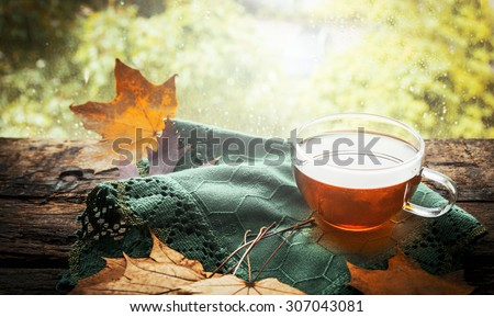 cup of tea with autumn leaves and green napkin  on wooden window sill on nature background - stock photo