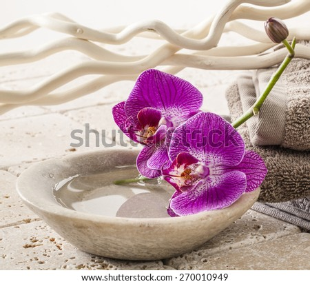 cup of water with orchids for spa treatment - stock photo