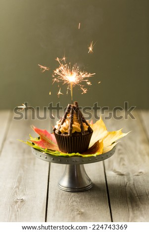 Cupcakes with orange icing swirl with chocolate fingers as logs - stock photo