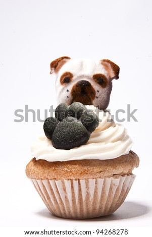 Cupcakes with Paw print and an English Bulldog on top - stock photo