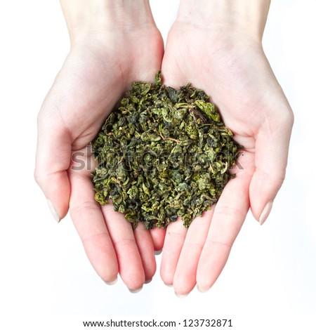 Cupped hands holding green tea - stock photo