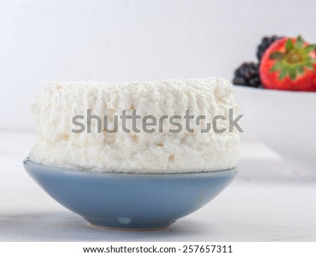Curd dairy product food  - stock photo