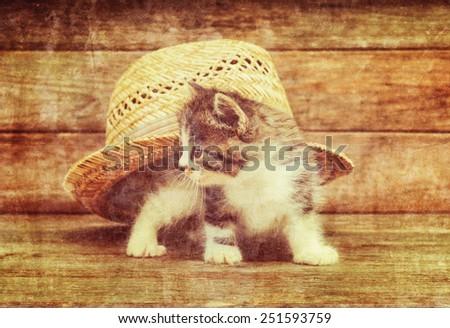 Curiosity little kitten sitting under the straw hat on wooden background. Vintage image - stock photo