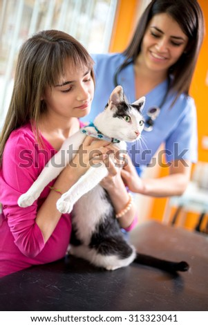 Curious cat watching vet ambulant while girl is holding her - stock photo