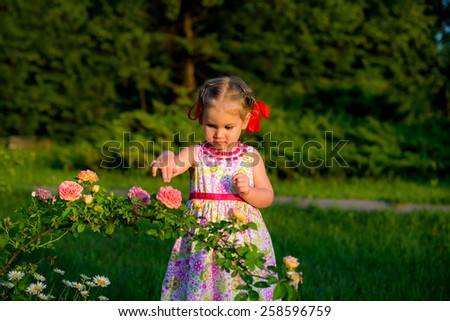 curious child in a beautiful summer dress with a red bow on her head in the spring park next to a bush of flowers roses flower finger touches - stock photo