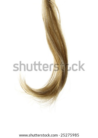 Curl of human Hair - stock photo