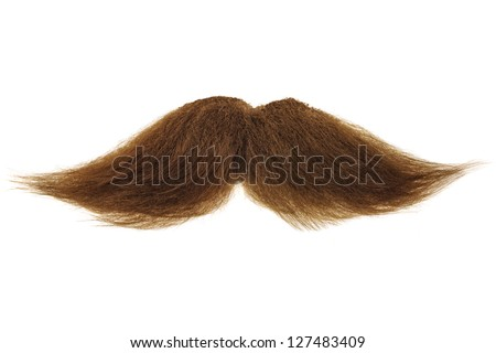 Curly brown mustache isolated on a white background - stock photo
