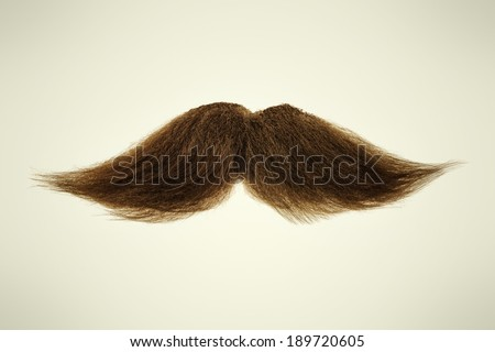 Curly brown mustache on a sepia background - stock photo