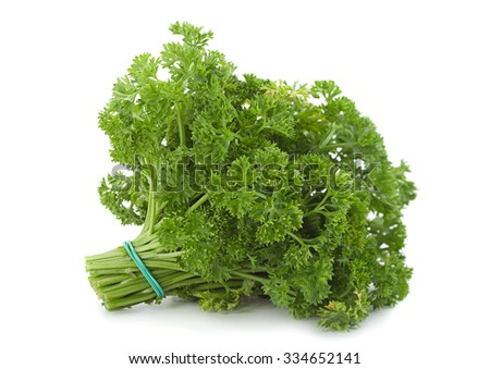 Curly parsley bunch closeup isolated on white - stock photo