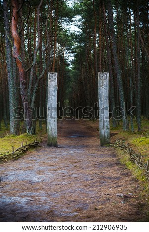 Curonian Spit. Entrance to the Dancing forest. - stock photo
