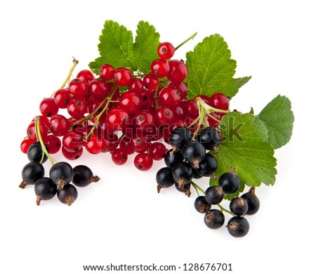 currant isolated on a white background