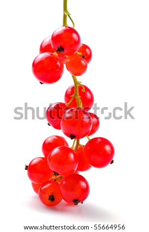 Currants bunch isolated on white background. Close up, shallow deep of field.