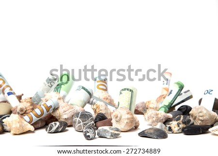 Currency decomposed under sea shells and pebbles - stock photo