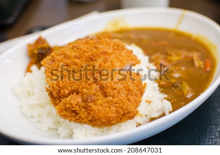Curry rice with deep fried pork , Japanese food - stock photo