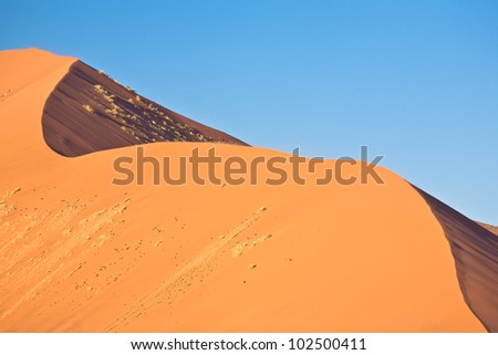 Curve dune - stock photo