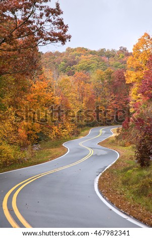 Curve in the Road in Autumn