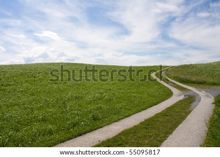 Curved Path on grass field