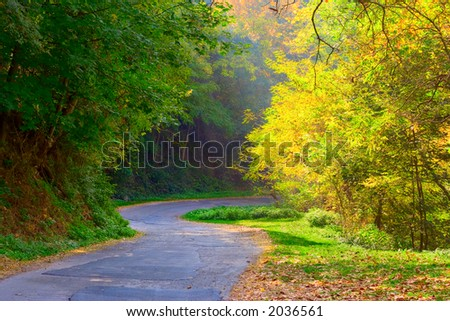 Curved road in the forests of Macedonia - stock photo