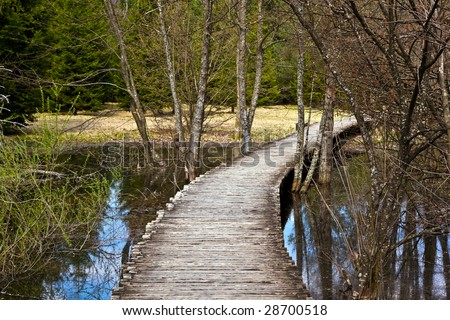 Curved wooden path in the Plitvice lakes (Plitvicka jezera) national park, Croatia, Europe. Season: Early spring.