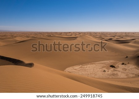 Curves of sand dunes in the Sahara in Morocco.