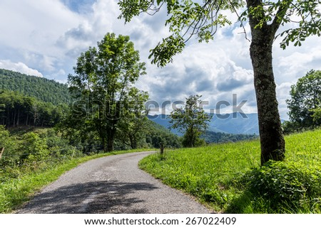 Curving backroad with a tree on a sunny day in the Pyrenees - stock photo