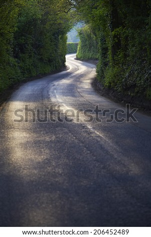 Curving Country Road Through Thick Forest - stock photo