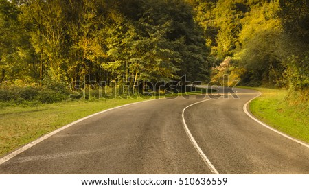 curvy road in Autumn woods with colorful foliage tree in rural area
