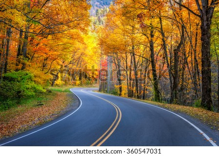 Curvy roadway and fall foliage along US 441 in the Great Smoky Mountains National Park - stock photo