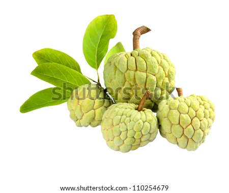 Custard apple isolated on white background with clipping path - stock photo