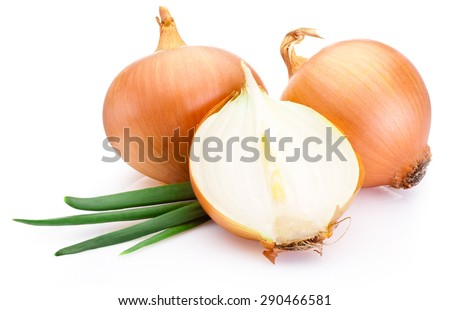 Cut fresh bulbs of onion on a white background - stock photo