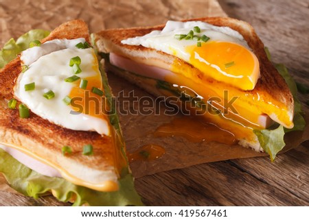 Cut in half sandwich with a fried egg, ham and cheese close-up on the paper on the table. horizontal - stock photo