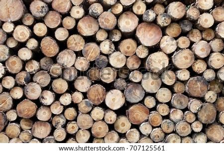 Cut log ends background texture