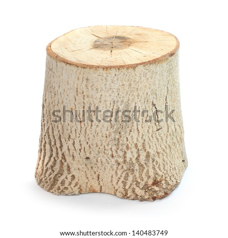 Cut log fire wood from Common Walnut (Juglans regia). Renewable resource of a energy. Environmental concept. - stock photo