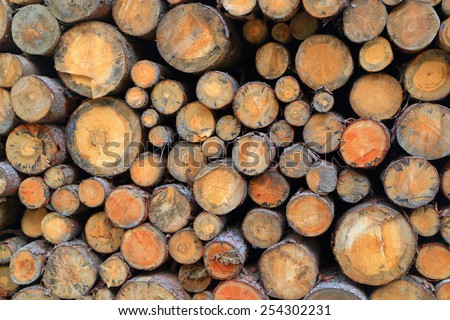 Cut logs piled one on top of another - stock photo