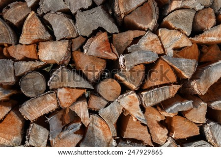 Cut logs showing concentric grain rings in a winter fuel store - stock photo