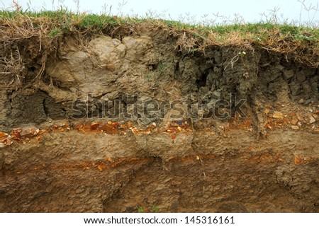cut of soil with different layers at the Freshwater lake., Thailand. - stock photo