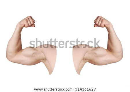 cut out male arms with flexed biceps muscles isolated on white - stock photo