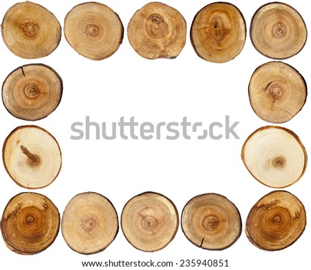 Cut tree stumps - frame - stock photo